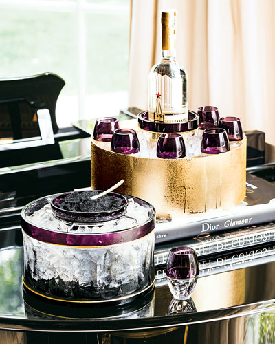 Waterford Crystal  Elysian Vodka Serving Set $2,000